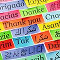 Alchemists language variations